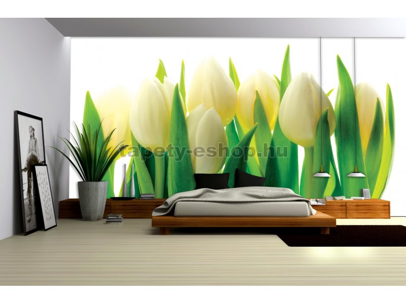 poszter tap ta feh r tulip nok pap r 254 x 184 cm tapeta. Black Bedroom Furniture Sets. Home Design Ideas